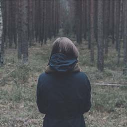 labyrinth lyric video
